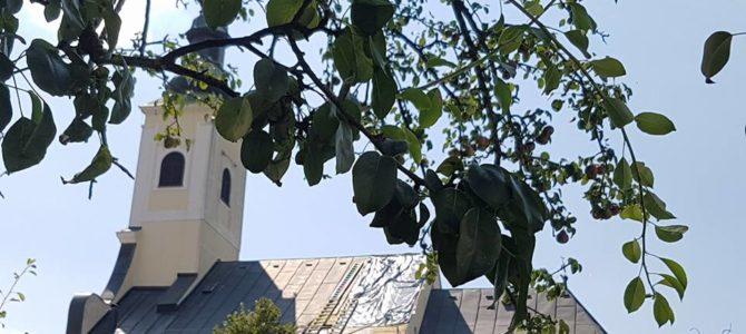 Započela sanacija oštećenja krovišta župne crkve